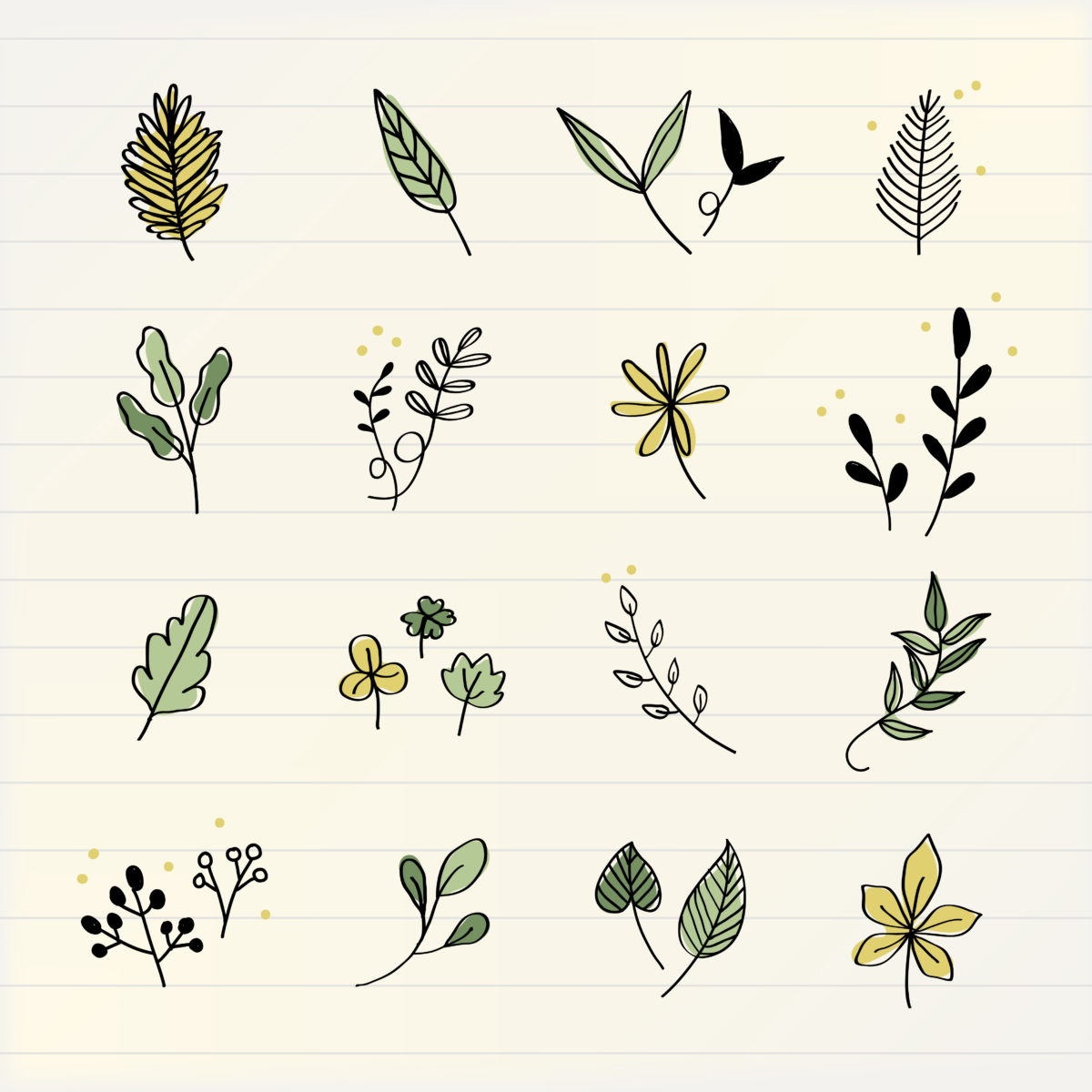 simple doodles of flowers and leaves on a lined notebook paper background.