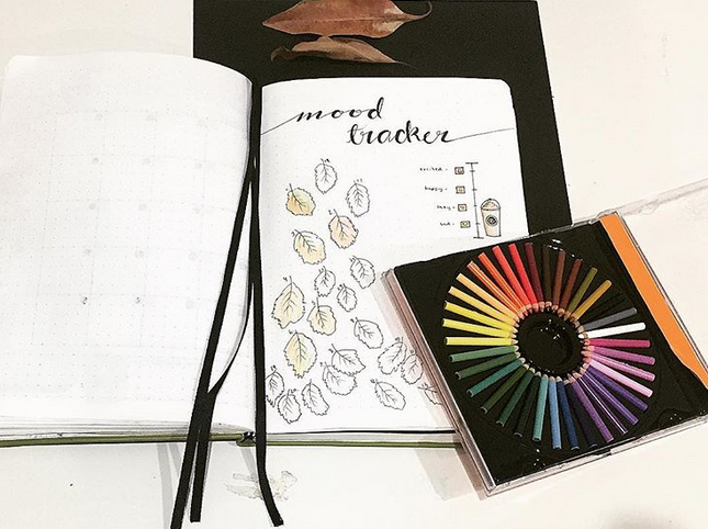 Themes for a fall bullet journal include things like autumn leaves, pumpkins & Halloween motifs, nature inspired doodles, and more.